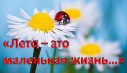 Лето-это маленькая жизнь...